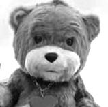 enigma bear bw