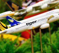Airline customer satisfaction: Tiger stages dramatic turnaround, Qantas flounders