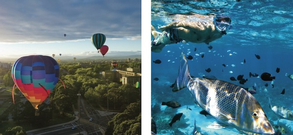 Content - hot air balloons and fish
