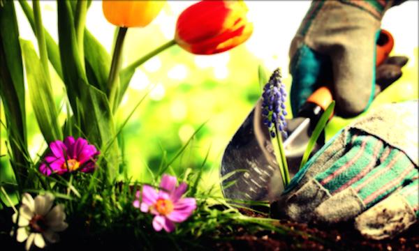 gardening 600w1
