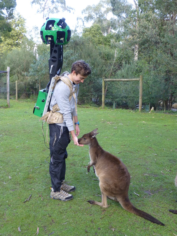 Google Street View Trekker for Tourism Victoria with a kangaroo