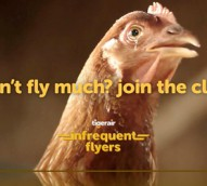 Latest campaign for Tigerair's Infrequent Flyer Club stars chicken that wants to fly higher than an eagle