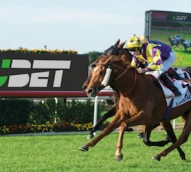 Recall for sports betting brands shifts during AFL/NRL grand finals and Spring Racing Carnival