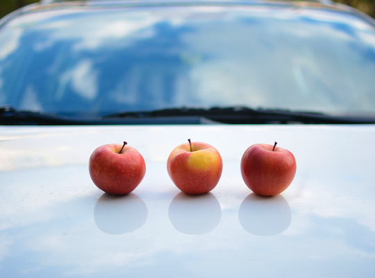 Apple is secretly designing electric cars, rumours suggest