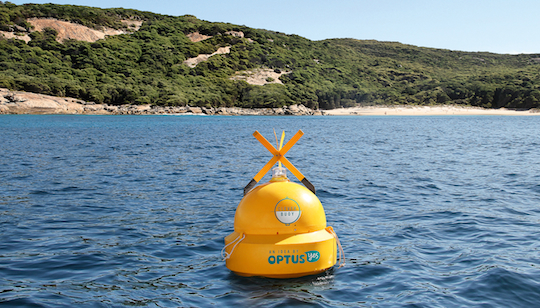 clever buoy in water