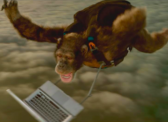 Bingle's new campaign: skydiving monkey and dancing crab get car insurance quotes