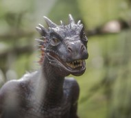 Game of Thrones dragon to light a fire for Northern Ireland tourism