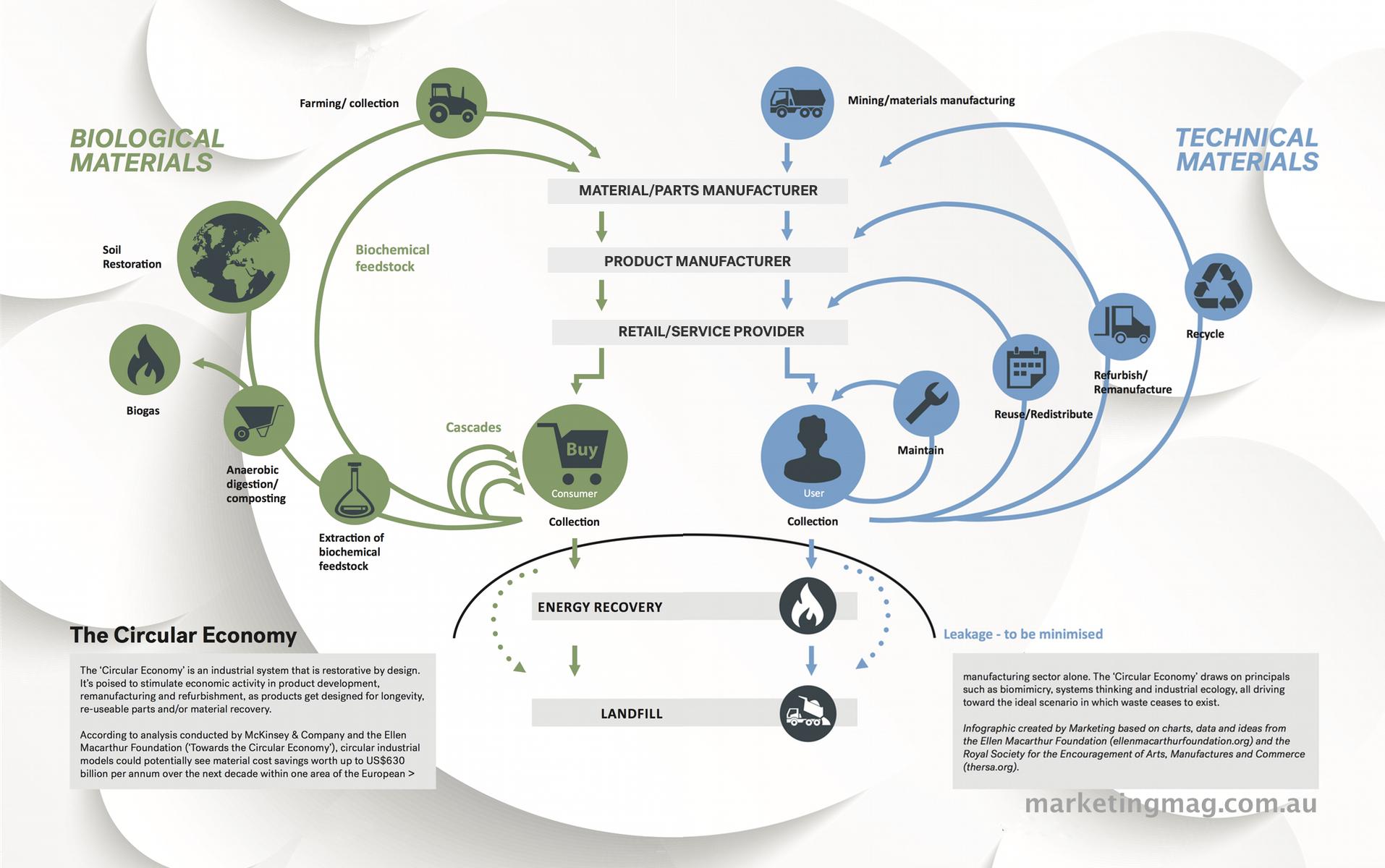 Infographic circular economy disrupt