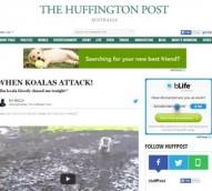 Media news: HuffPost Australia; Tumblr ads; AdShel digital screens and beacons, The Chronicle Toowoomba digital subscription
