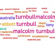 Lessons from #Libspill: the impact of online and social media on reputation