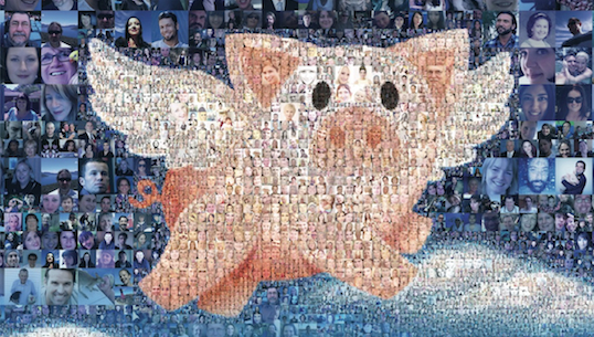 Pigs can fly: inside Animals Australia's 'Make It Possible' campaign