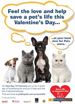 Valentines Pets