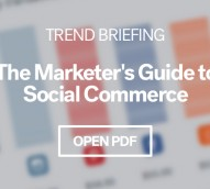 Pro Trend Briefing: 'Social Commerce: leveraging social media to influence sales' (Copy)