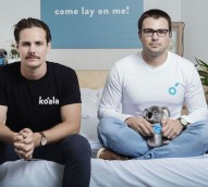 Disruption, expansion and good causes with Koala mattresses