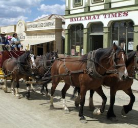 Golden opportunity: marketing director wanted for iconic Victorian tourism brand