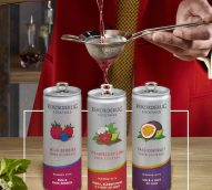 Rekorderlig cocktail brand extension canned