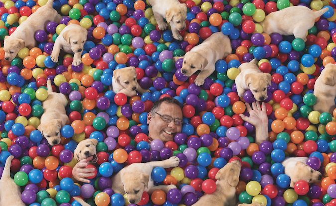 Puppies, rollercoasters, zombies and speedboats deliver Virgin Mobile's new brand platform