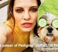 New Pedigree 'SelfieStix' let users take the perfect selfie with their canine companion