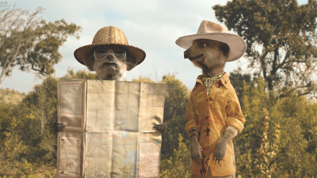 Meerkats test out holiday for Compare The Market competition winners