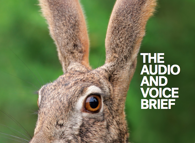 The Audio and Voice Brief – Marketing Mag launches its latest special issue