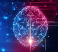 The brain lies – taking neurology in advertising to new heights