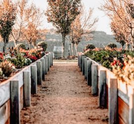 Down the garden path? Six ways for brands to blend martech with customer journeys