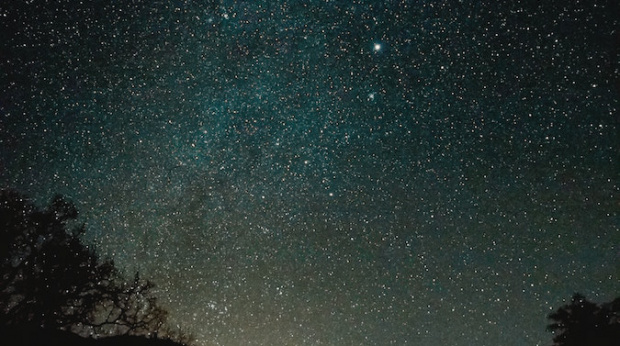 Important lessons from a CMO: Let data be the 'North Star' to guide your decisions